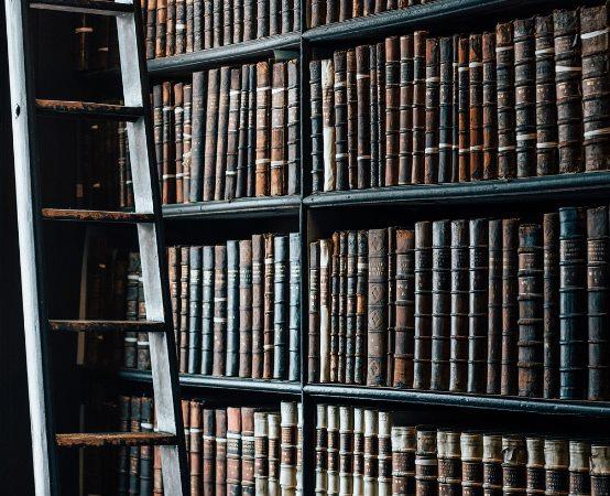 Biblioteka Słupsk:                  W drodze - widziane z paralotni